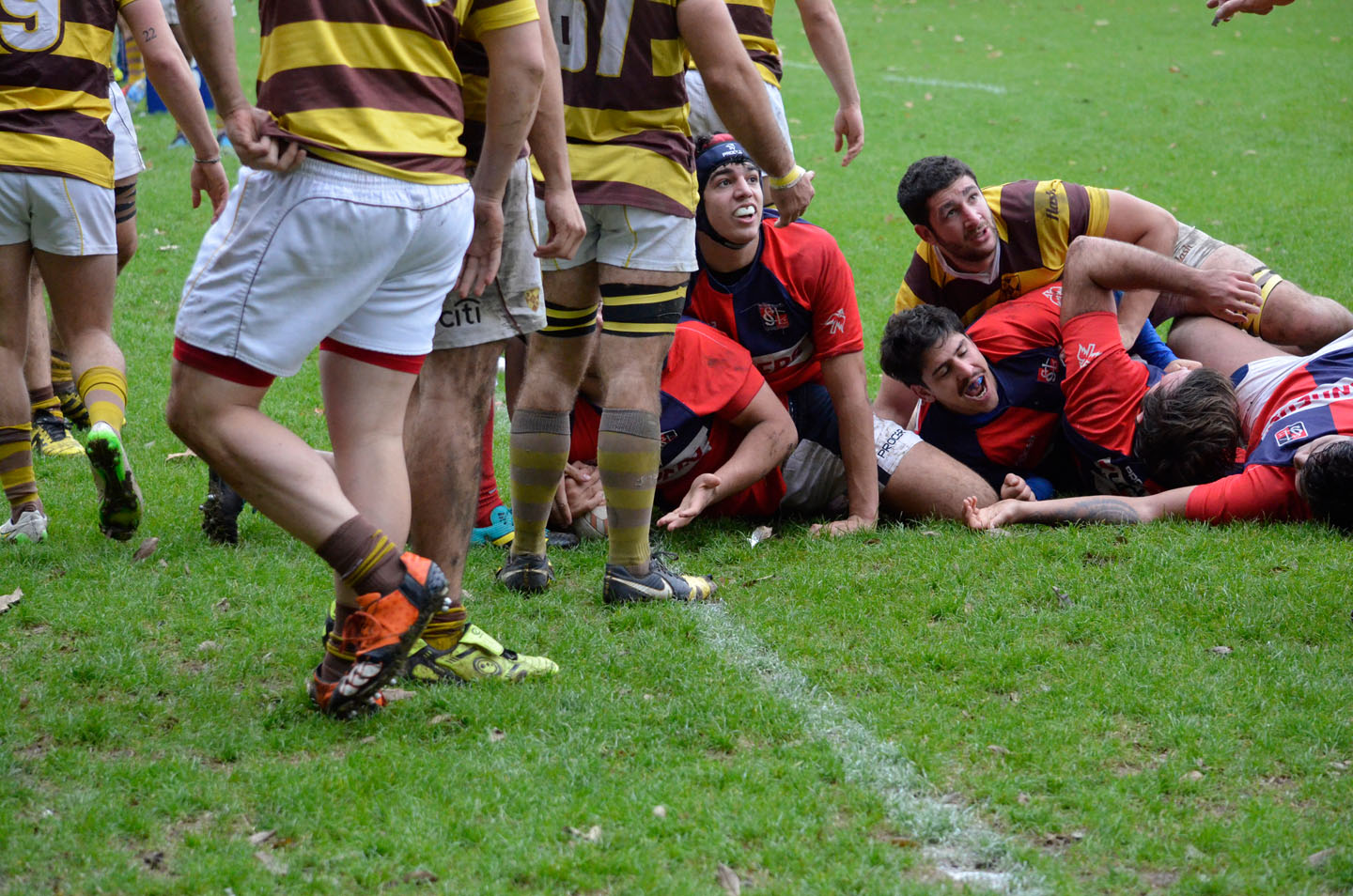 rugby-29-6 (128)