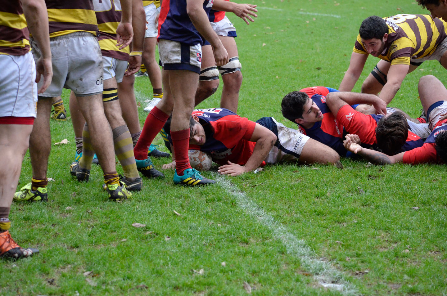 rugby-29-6 (129)
