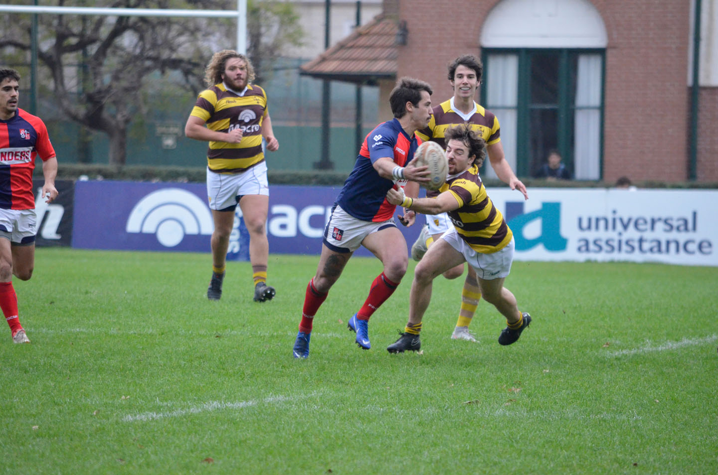 rugby-29-6 (142)