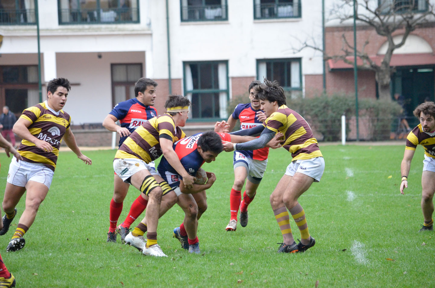 rugby-29-6 (149)
