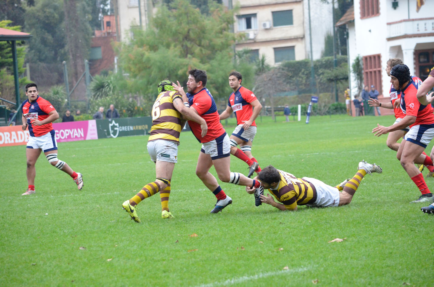 rugby-29-6 (152)