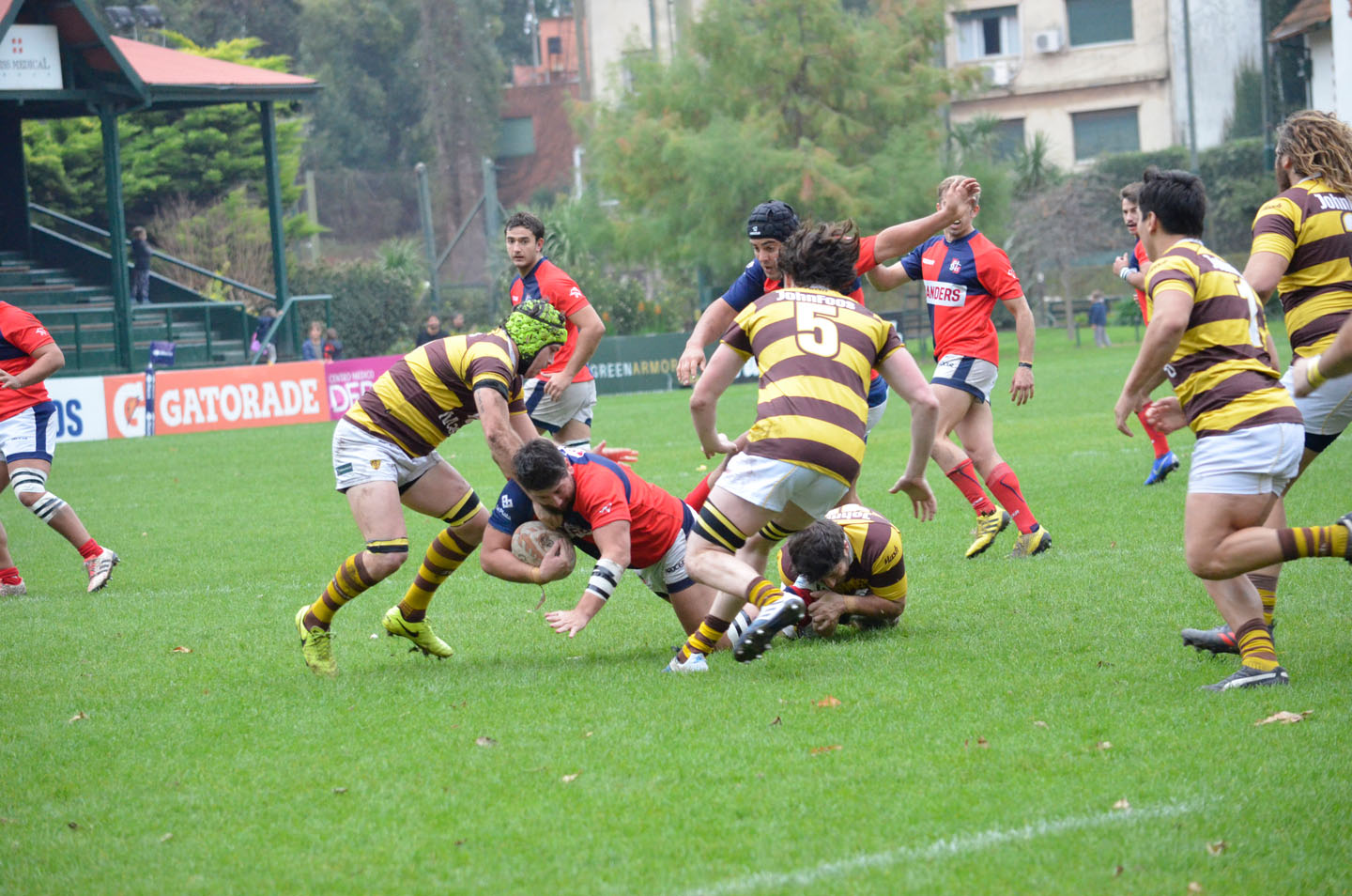 rugby-29-6 (153)