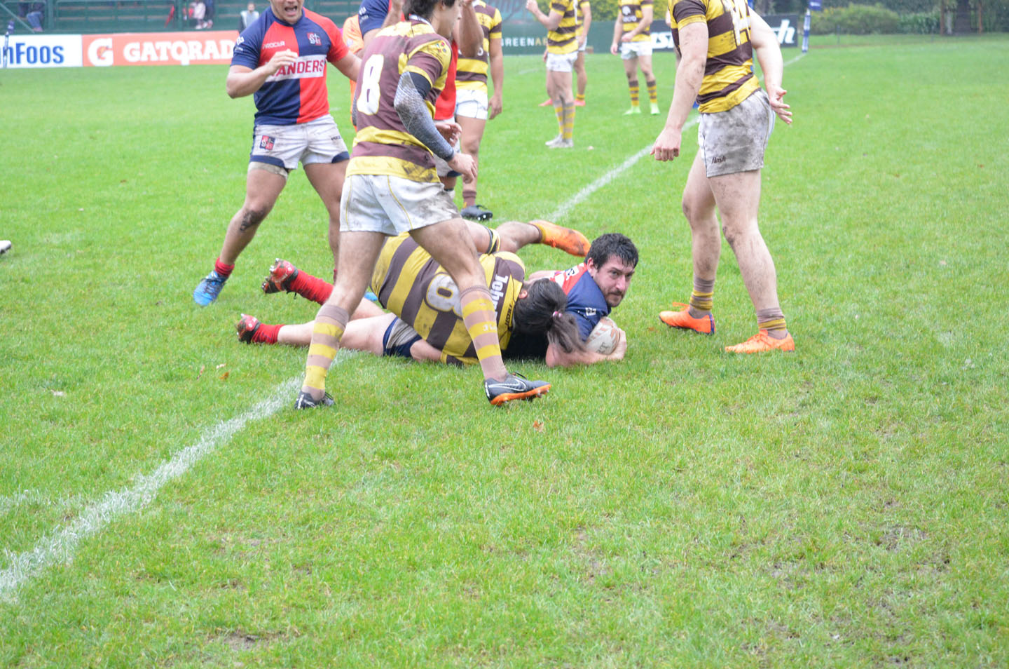 rugby-29-6 (179)