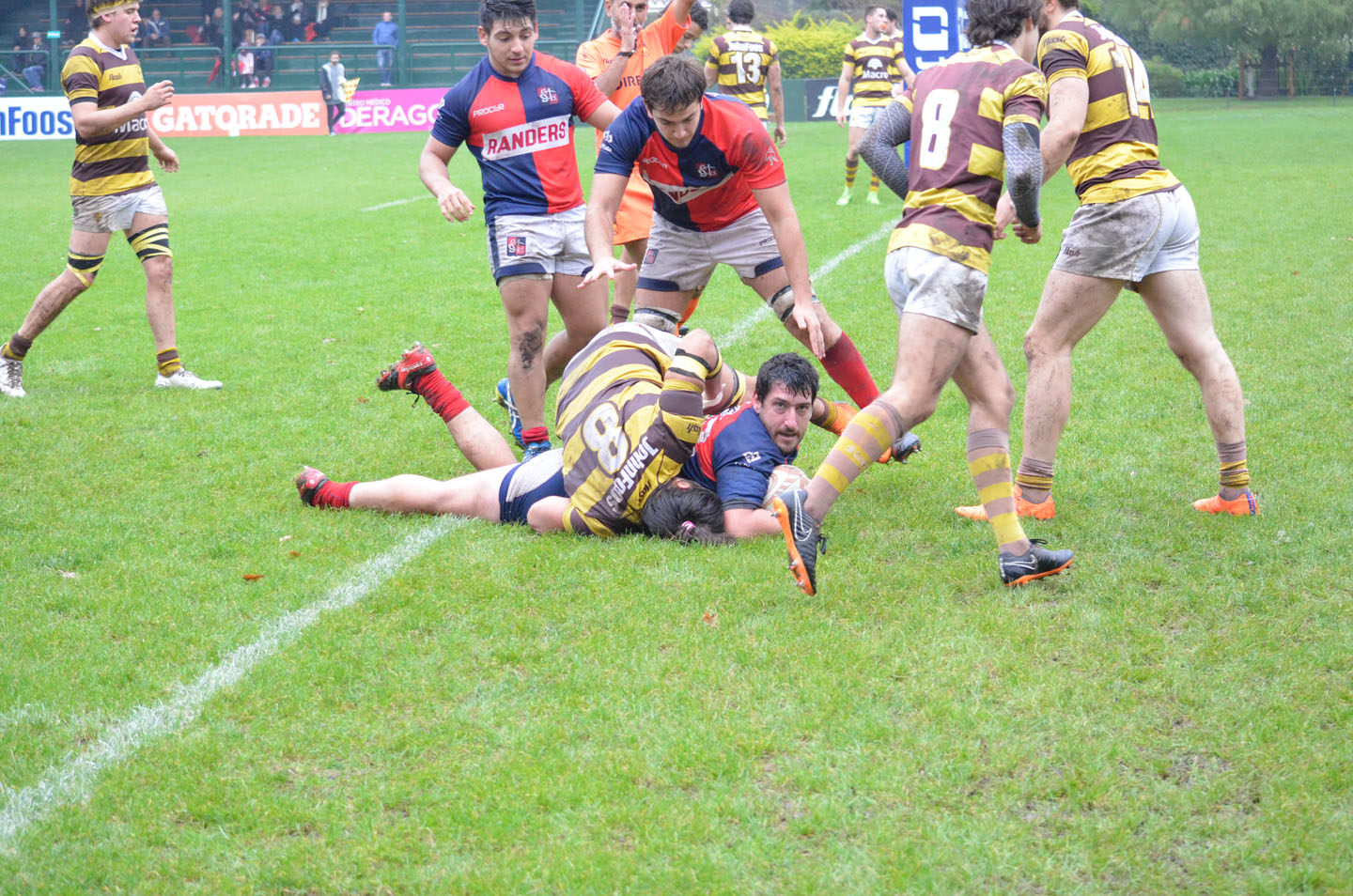 rugby-29-6 (180)