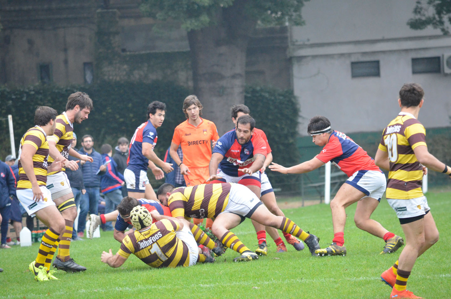 rugby-29-6 (186)