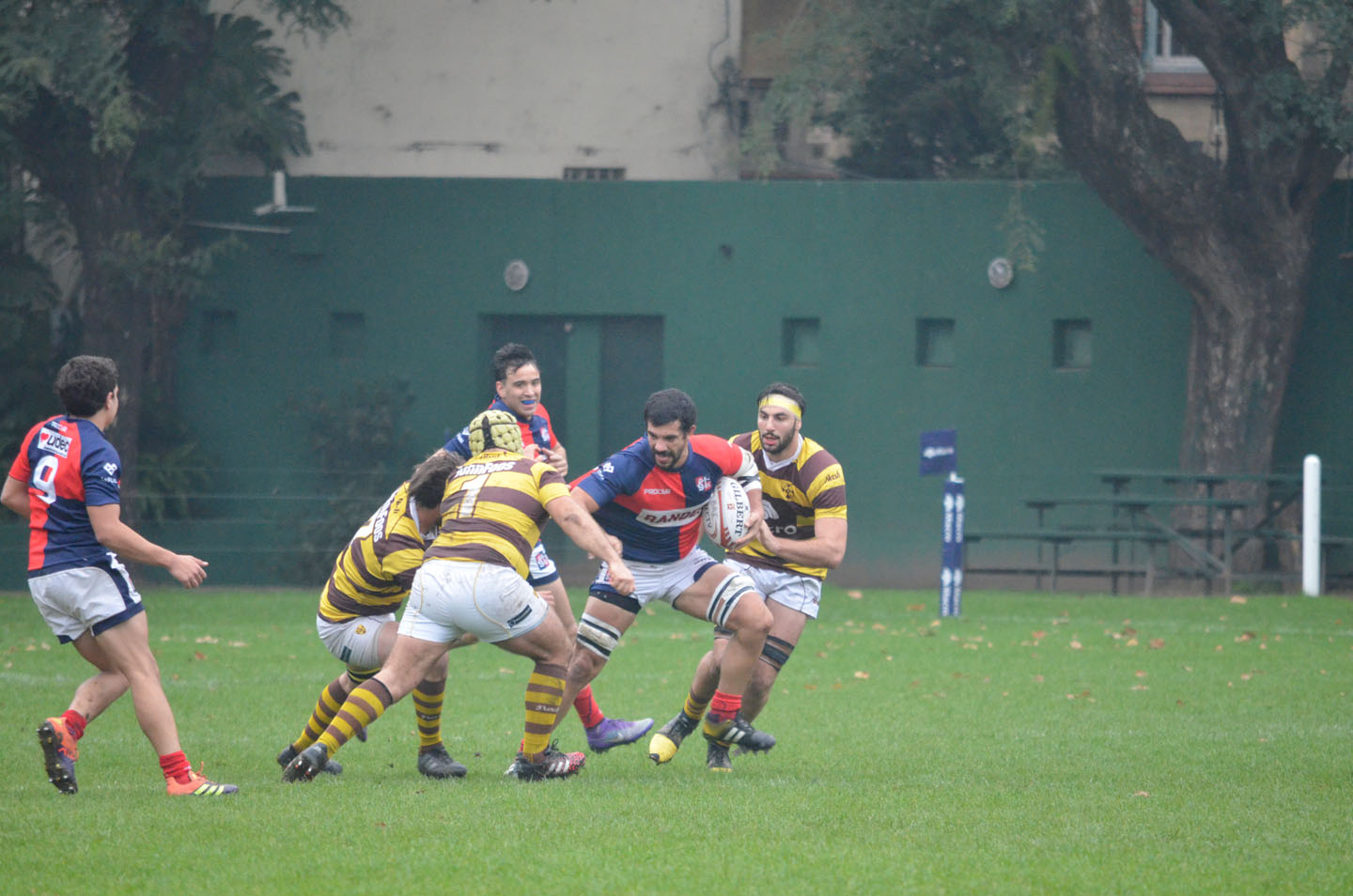 rugby-29-6 (188)