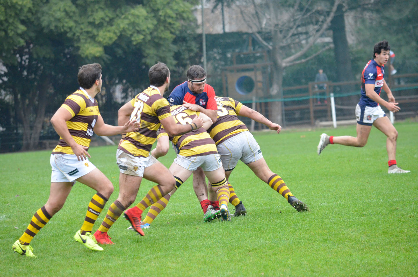 rugby-29-6 (197)