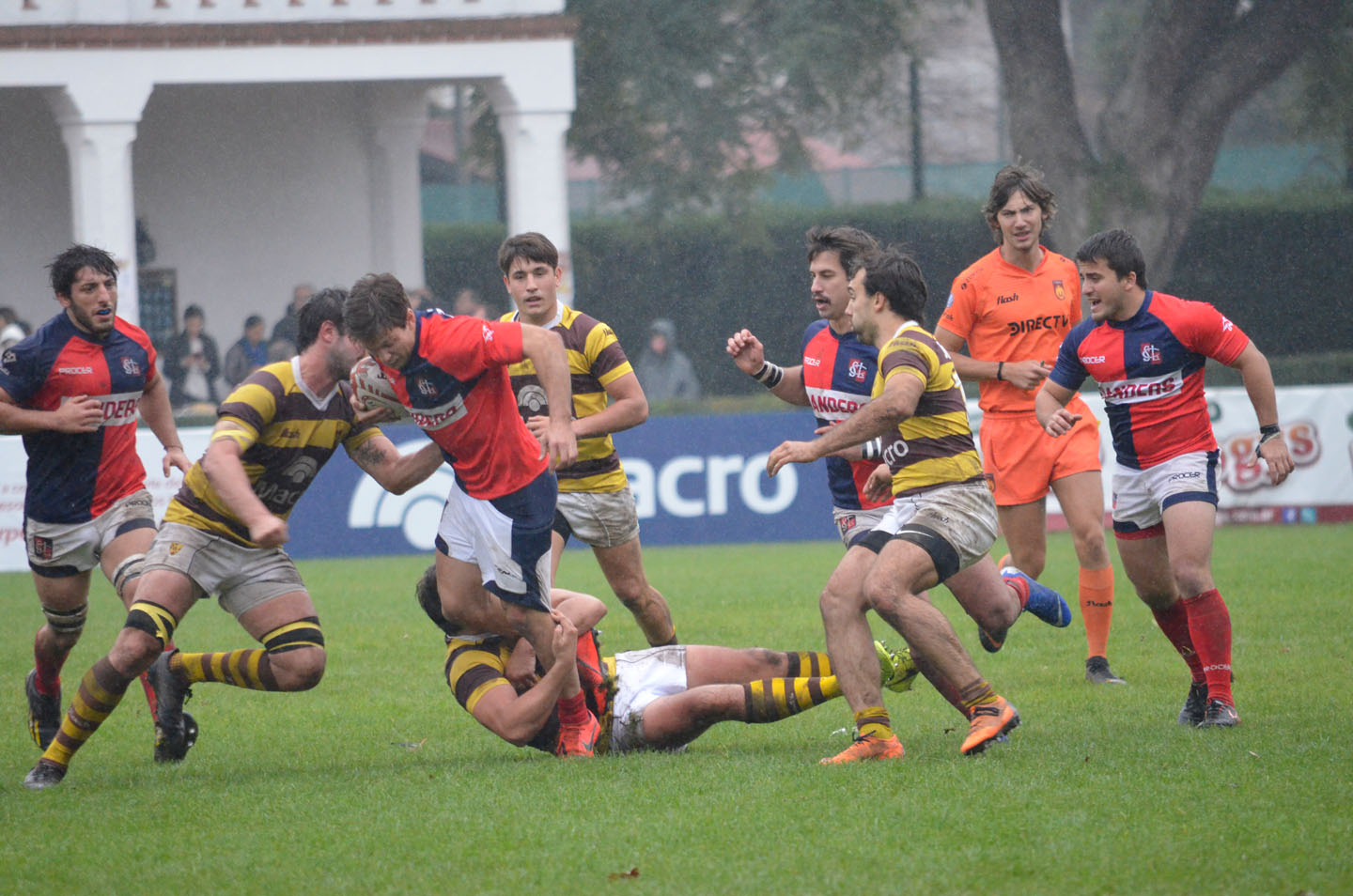 rugby-29-6 (217)