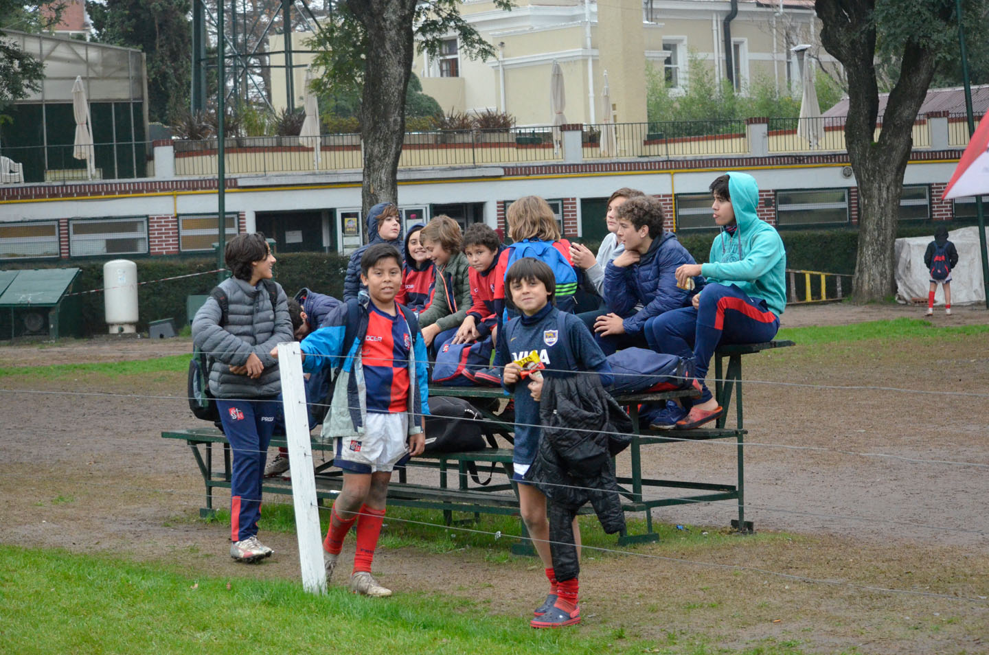rugby-29-6 (229)